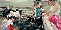 Alltag der mongolischen Nomaden