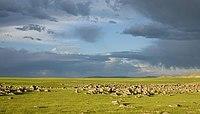 Mongolei Licht und Landschaft