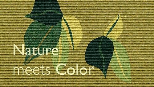 Bau 2019 Nature Meets Color Tretford Teppiche